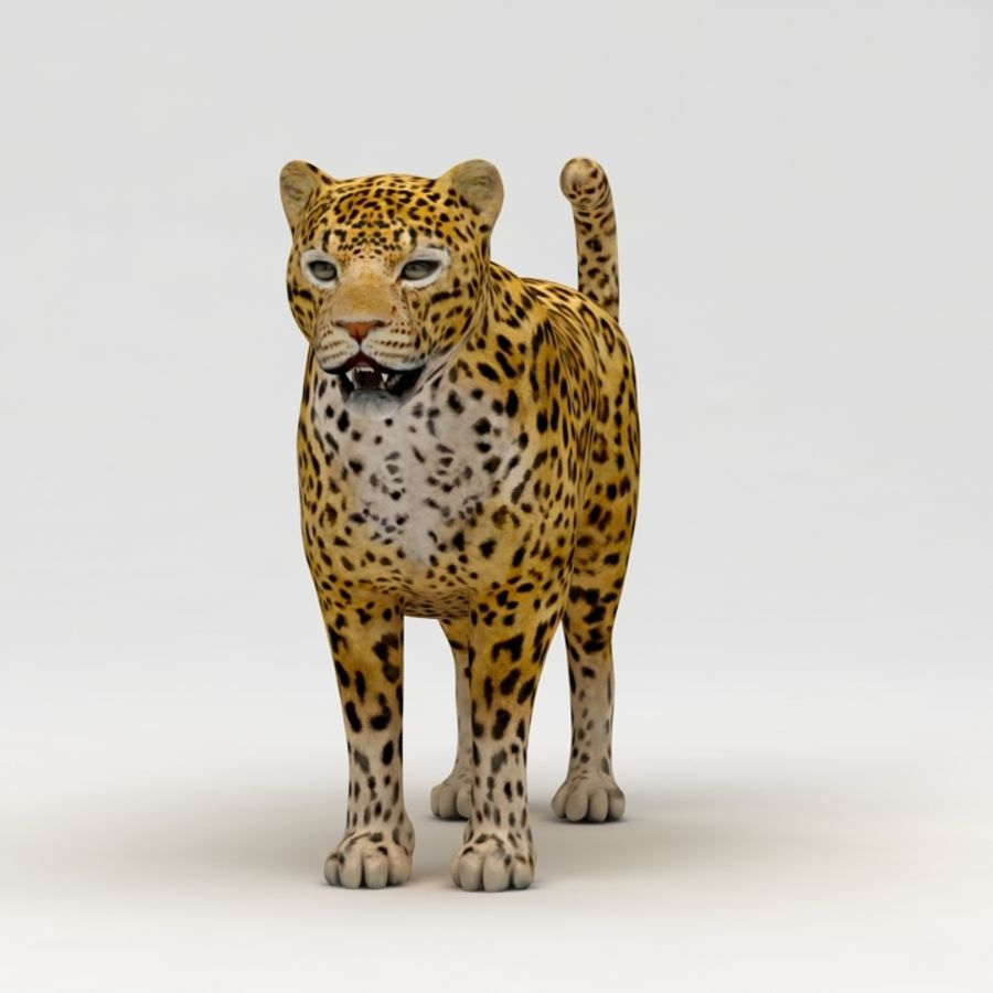Leopard royalty-free 3d model - Preview no. 3