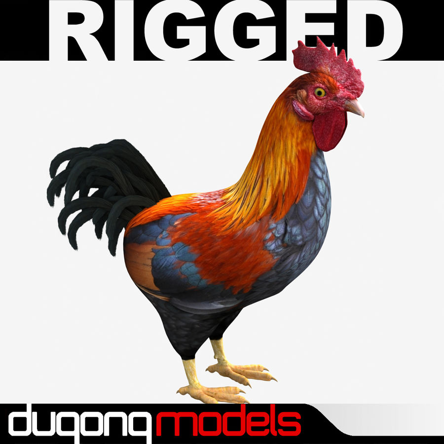 Rooster royalty-free 3d model - Preview no. 1