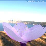Jasny Różowy Kwiat 3d model