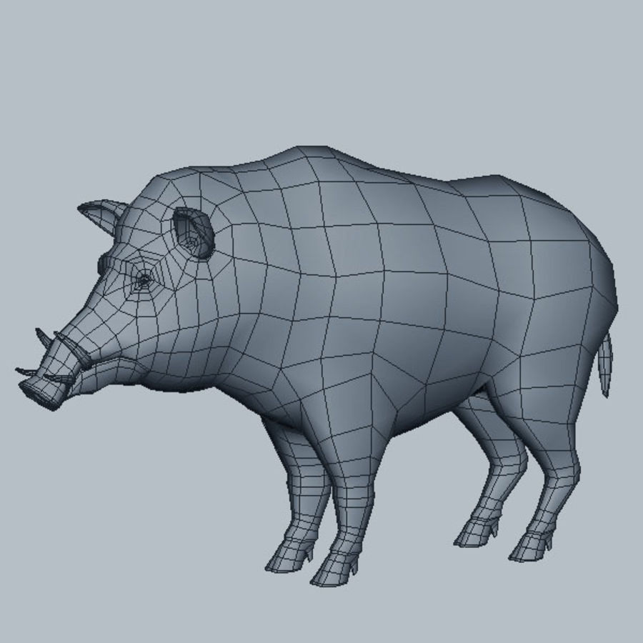 Cinghiale royalty-free 3d model - Preview no. 6