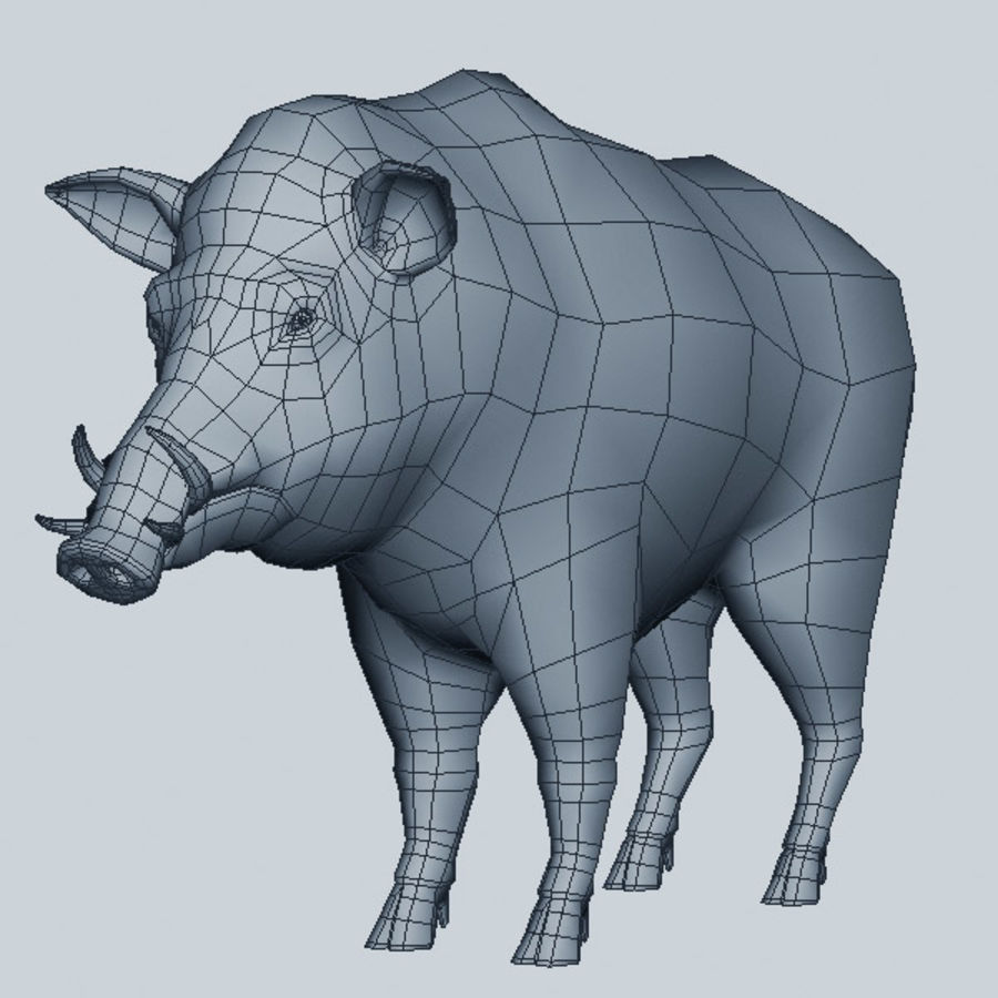 Cinghiale royalty-free 3d model - Preview no. 7