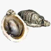 huître 3d model