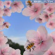 Bee 3d model
