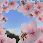 pszczoła 3d model