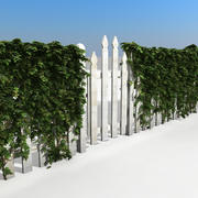 Wooden Garden Fence With Ivy Scene 3d model
