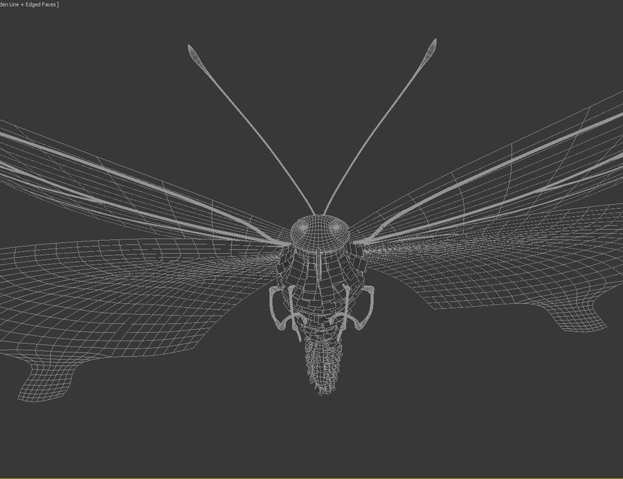 Latający motyl royalty-free 3d model - Preview no. 9