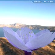 Mor çiçek 3d model