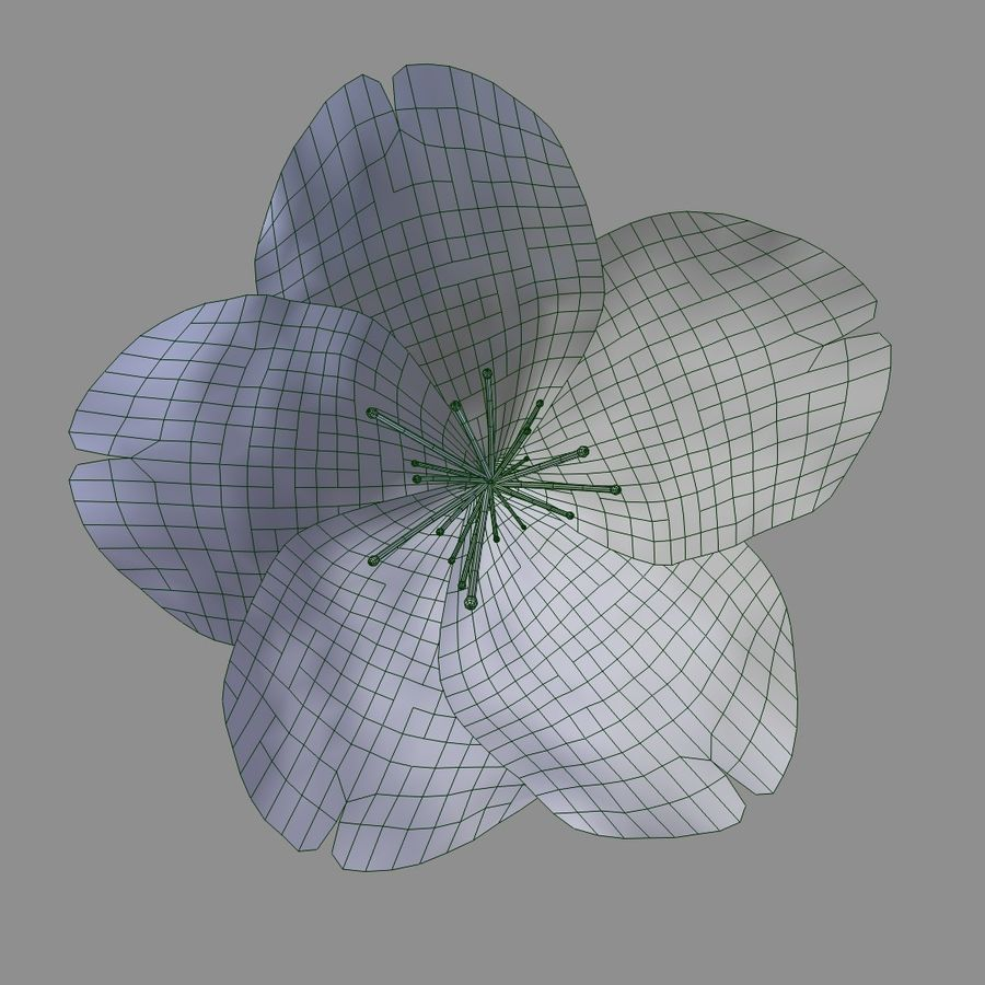 Red Flower royalty-free 3d model - Preview no. 5