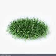 잔디 세그먼트 3d model