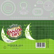 Canada Dry Can 3d model