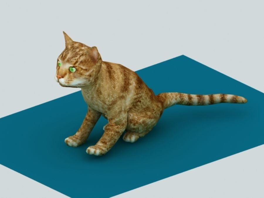 Cat royalty-free 3d model - Preview no. 1