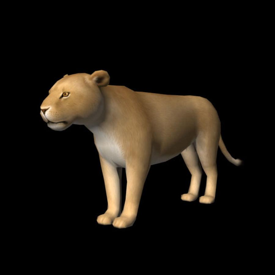 Lion (femmina) royalty-free 3d model - Preview no. 1