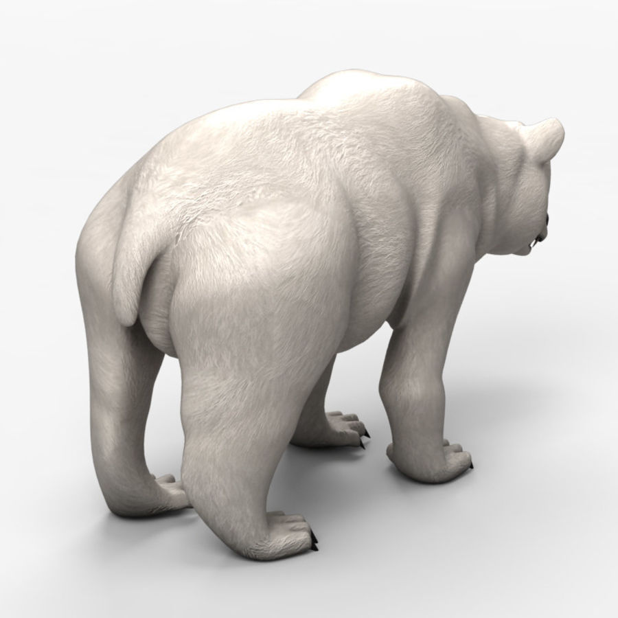 Düşük Poli 2 Bear royalty-free 3d model - Preview no. 5