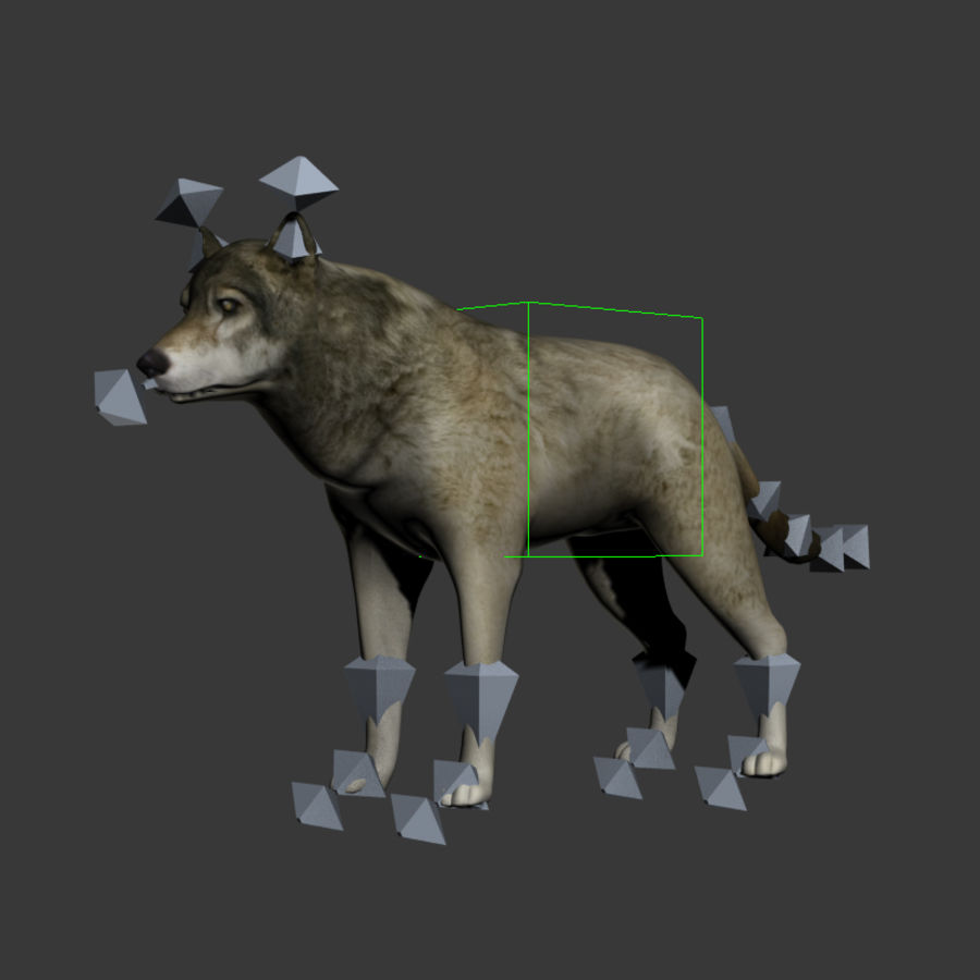 Wolf royalty-free 3d model - Preview no. 9