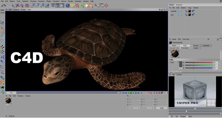 カメの海 royalty-free 3d model - Preview no. 17