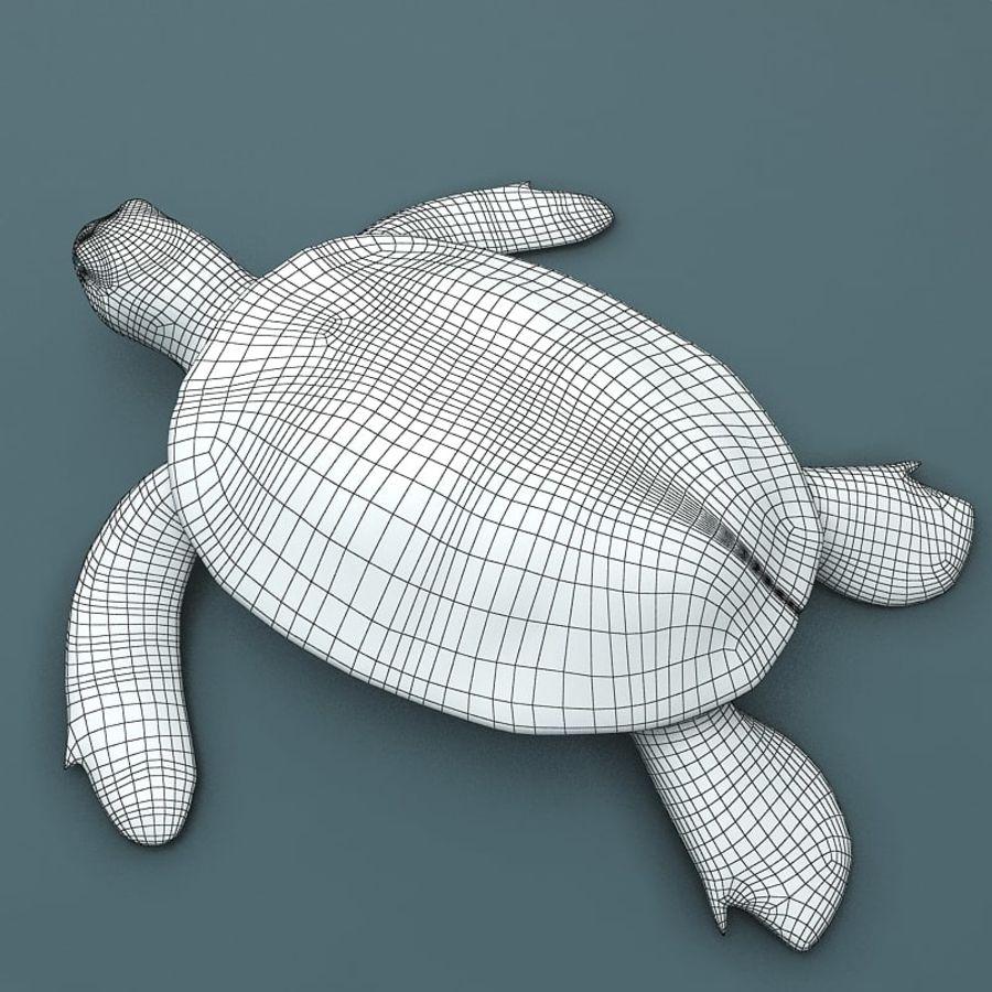 カメの海 royalty-free 3d model - Preview no. 6