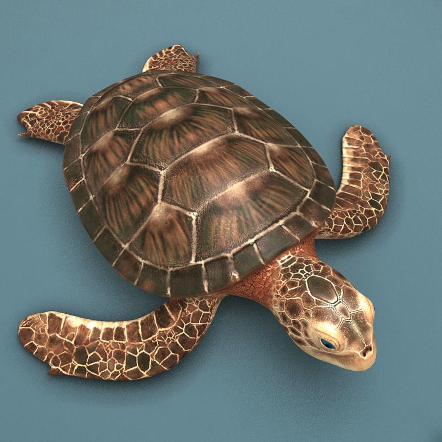 カメの海 royalty-free 3d model - Preview no. 1