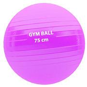 Ballon de gymnastique 3d model