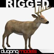 鹿 3d model