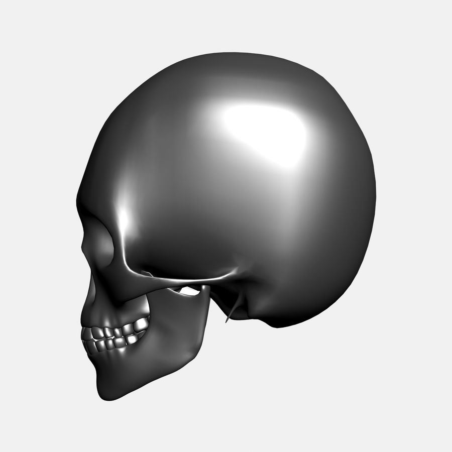 Metalowa czaszka royalty-free 3d model - Preview no. 3