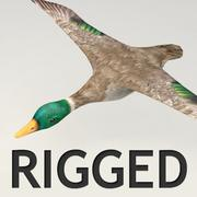 Lowpoly rigged flyga duck modell 3d model