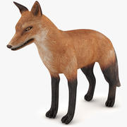 Fox game-ready 3d model