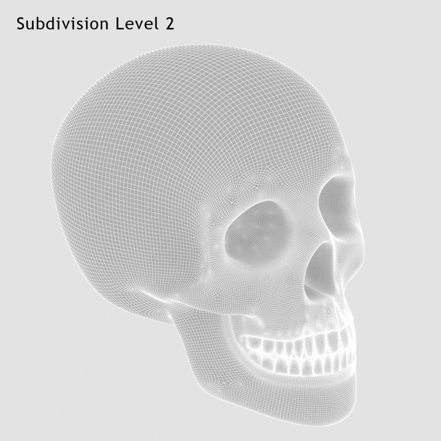 Skulls royalty-free 3d model - Preview no. 8