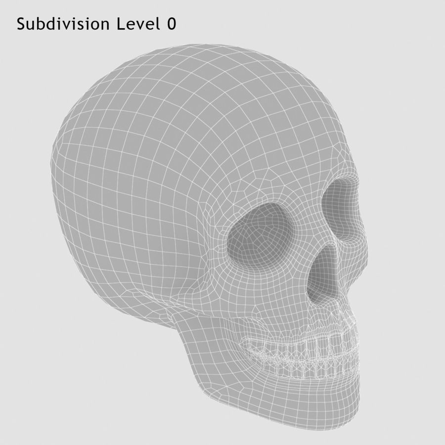 Skulls royalty-free 3d model - Preview no. 6