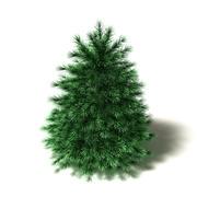 Cartoon pijnboom 3d model