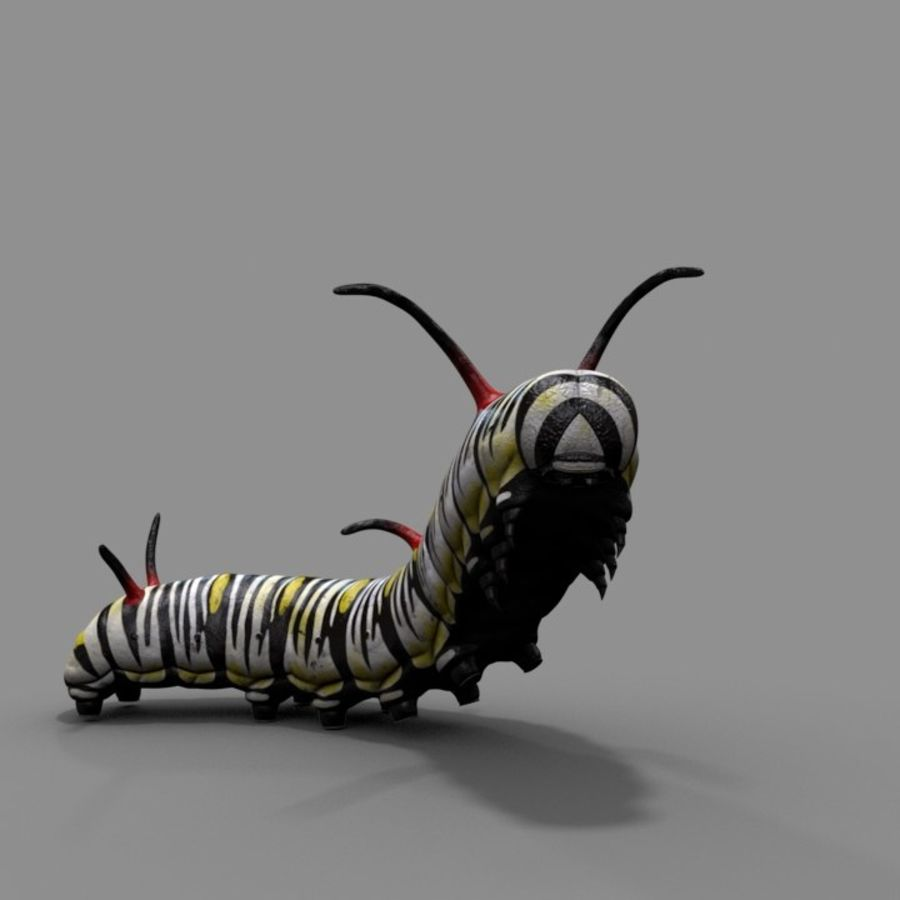 Worm royalty-free 3d model - Preview no. 1
