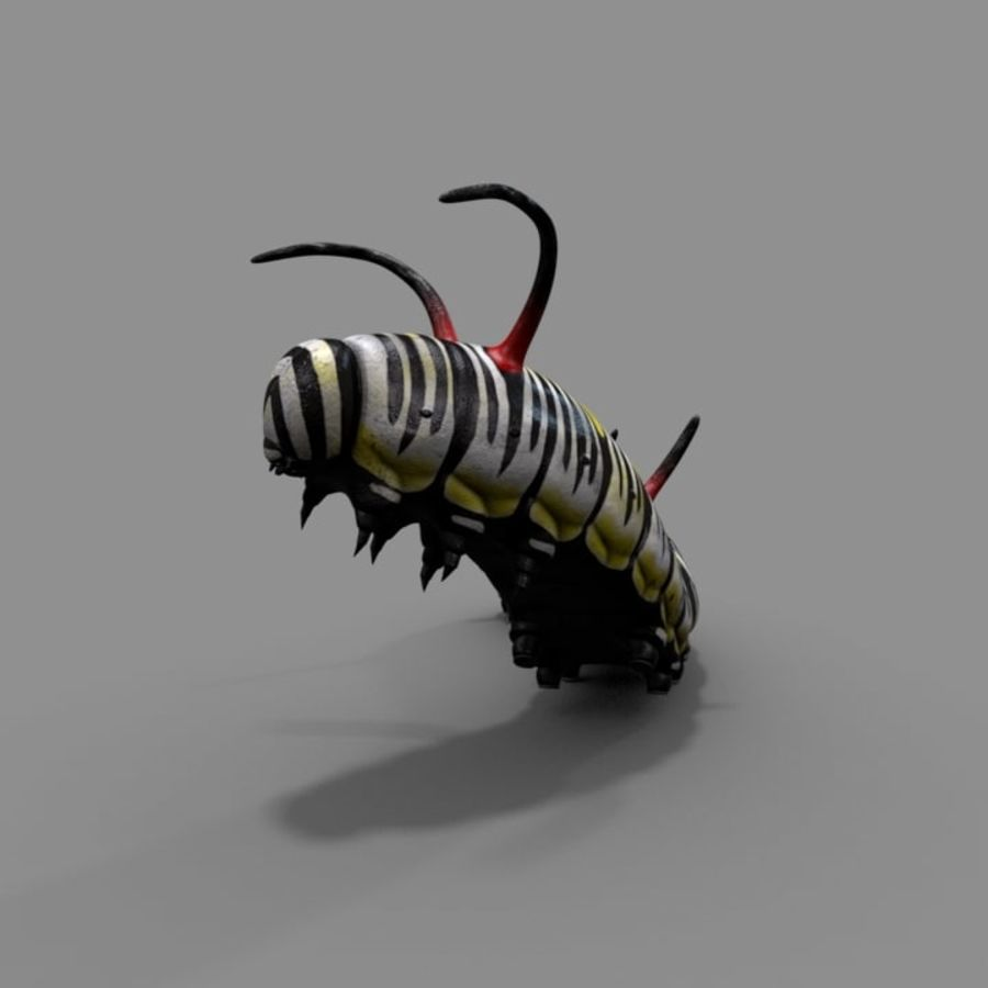Worm royalty-free 3d model - Preview no. 4