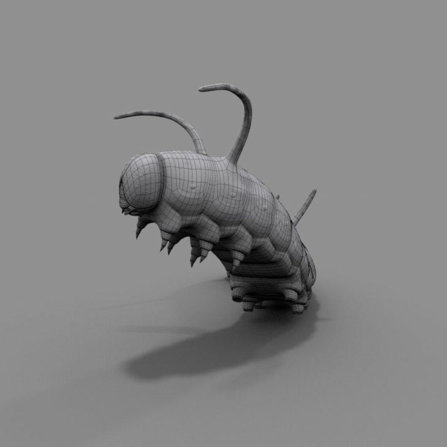 Worm royalty-free 3d model - Preview no. 7