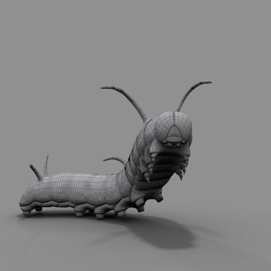 Worm royalty-free 3d model - Preview no. 5