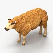 Owca jagnięca 1 3d model