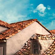 Old roof 3d model