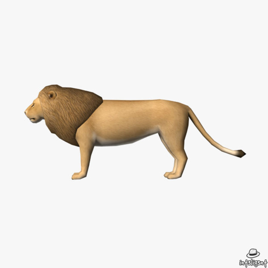 Lion (Male) royalty-free 3d model - Preview no. 4