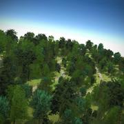 Park Forest Block Trees 3d model