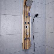 淋浴板鹦鹉螺(法国瓦伦丁) 3d model