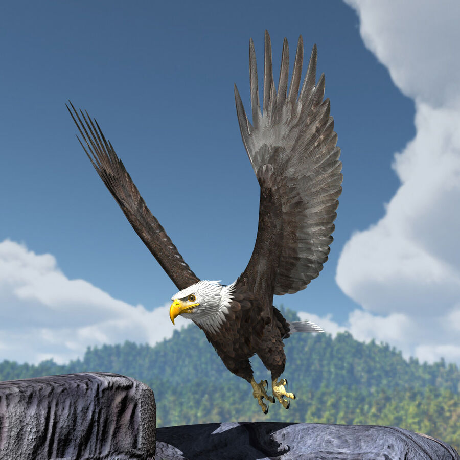 American Bald Eagle royalty-free 3d model - Preview no. 21