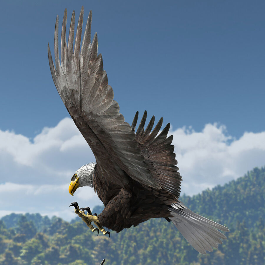 American Bald Eagle royalty-free 3d model - Preview no. 15