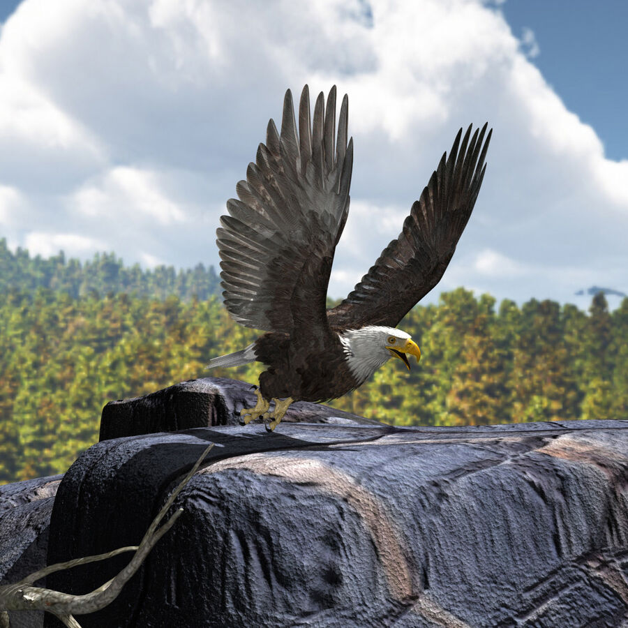 American Bald Eagle royalty-free 3d model - Preview no. 12