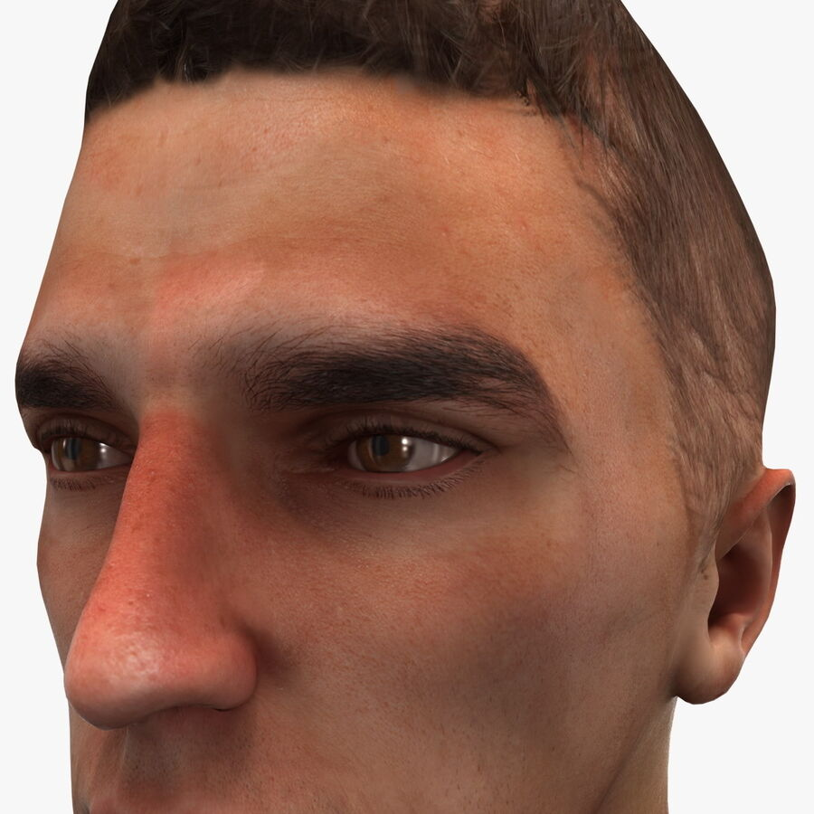 Male Head Collection royalty-free 3d model - Preview no. 84