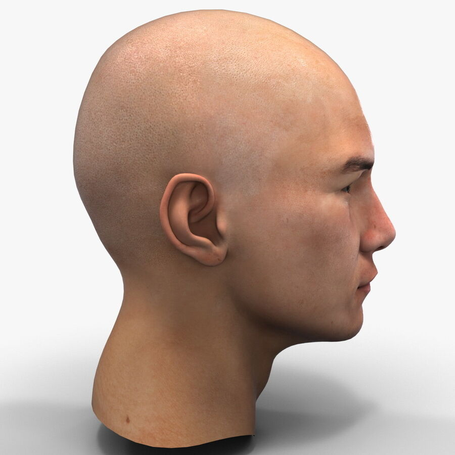 Male Head Collection royalty-free 3d model - Preview no. 59