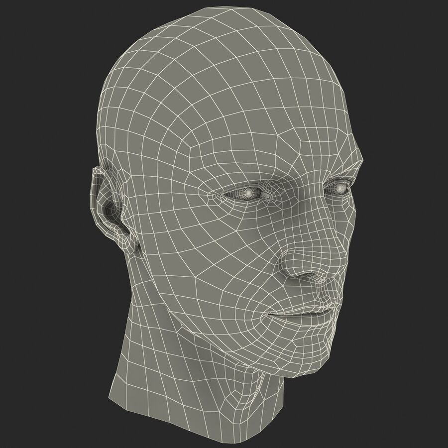 Male Head Collection royalty-free 3d model - Preview no. 67