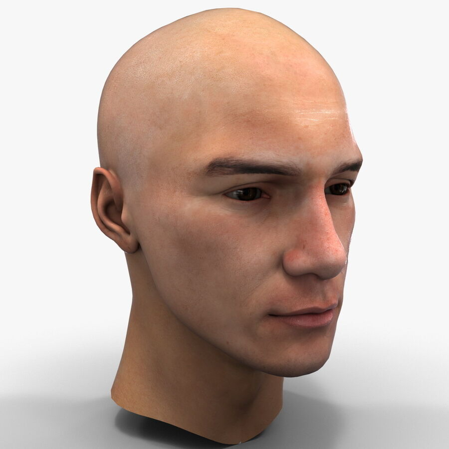 Male Head Collection royalty-free 3d model - Preview no. 58