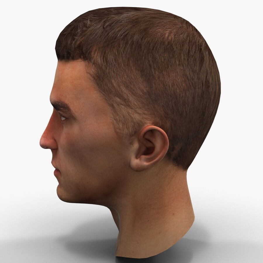 Male Head Collection royalty-free 3d model - Preview no. 82