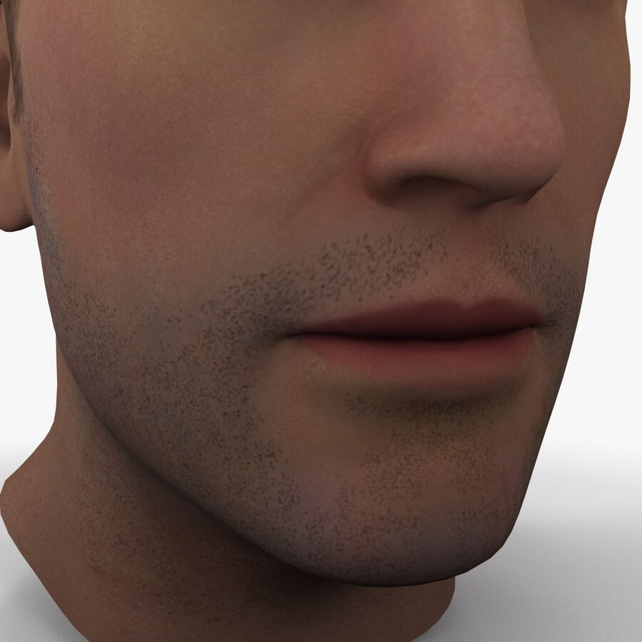 Male Head Collection royalty-free 3d model - Preview no. 13