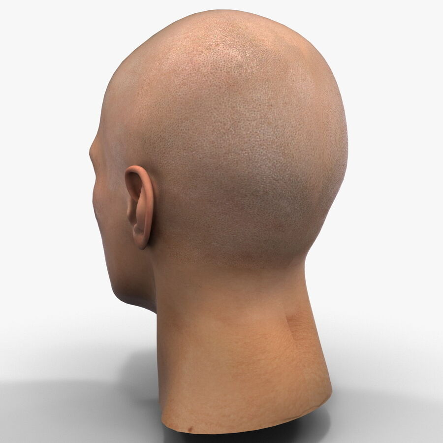 Male Head Collection royalty-free 3d model - Preview no. 61