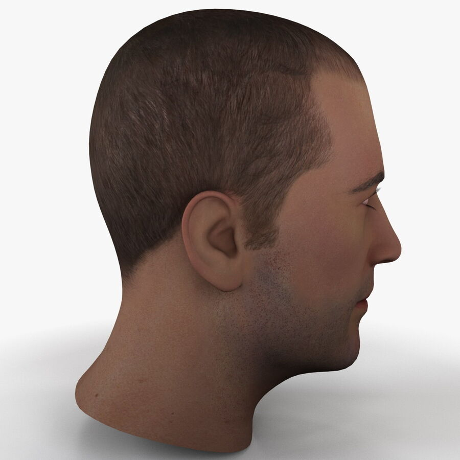 Male Head Collection royalty-free 3d model - Preview no. 6