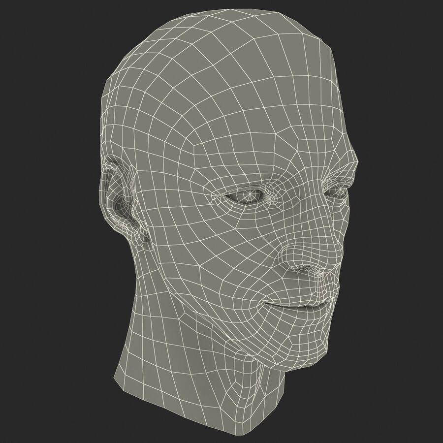Male Head Collection royalty-free 3d model - Preview no. 46